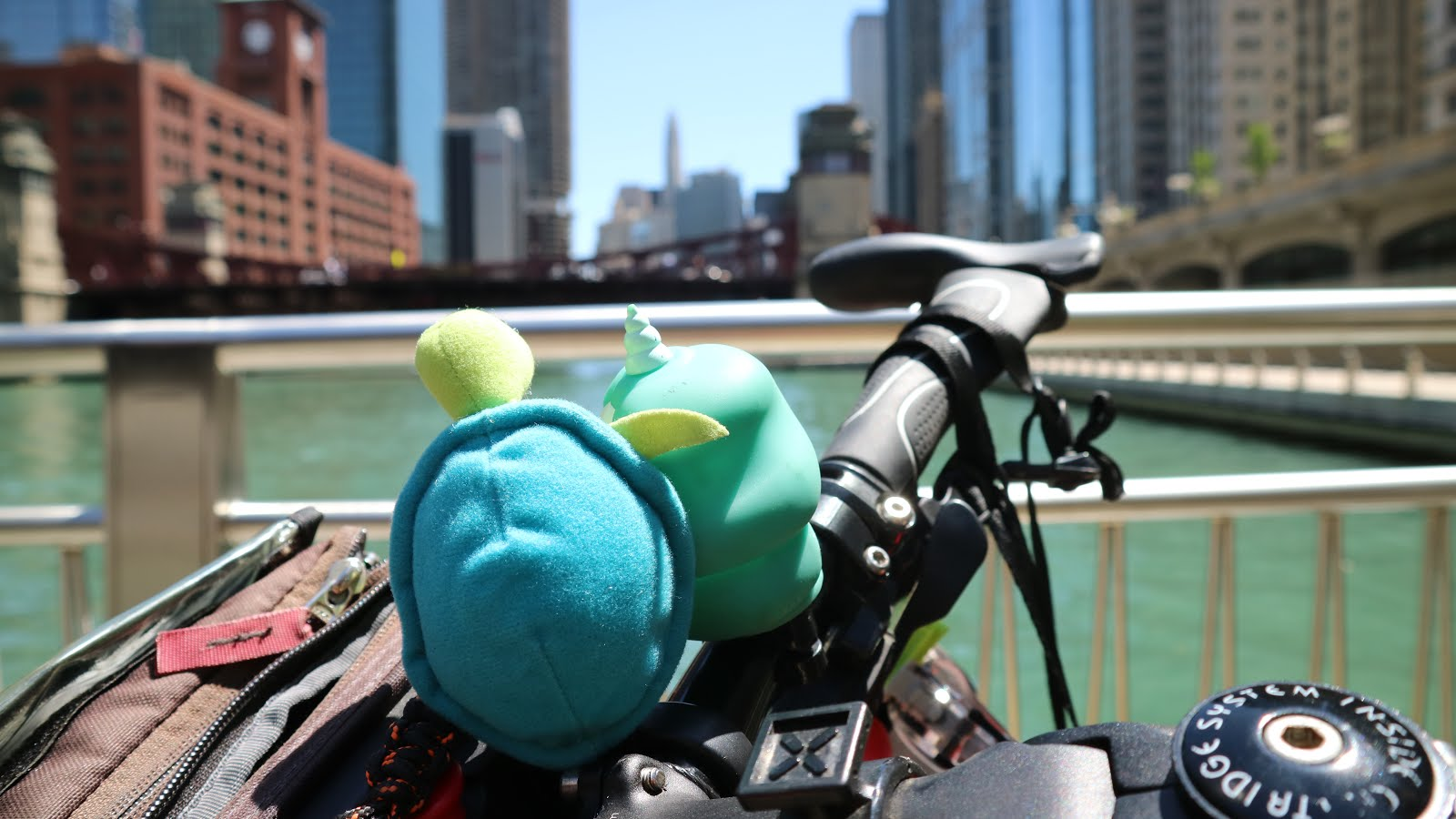 Karyn et Franklin sur Chicago River