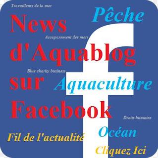 https://www.facebook.com/Regard-sur-la-P%C3%AAche-et-Aquaculture-320623654728433/timeline/