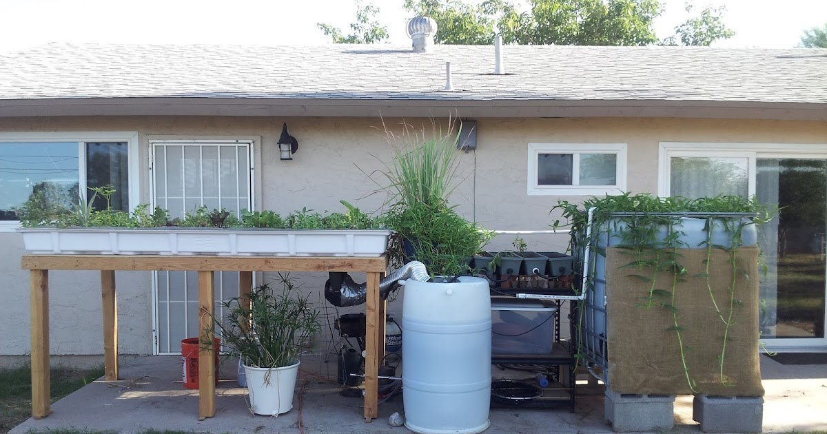 Commercial aquaponic systems for sale auaponics fish for Aquaponics systems for sale