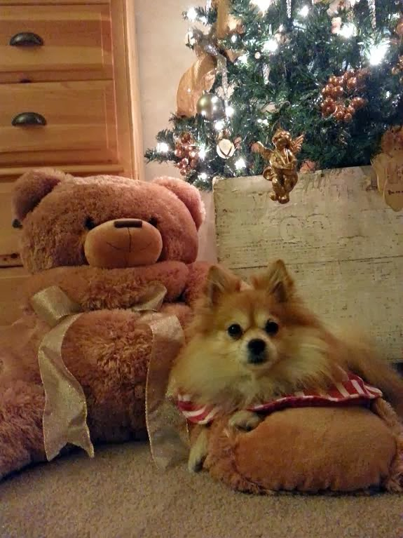 The Adventures Of Tartanscot A Four Footed Holiday