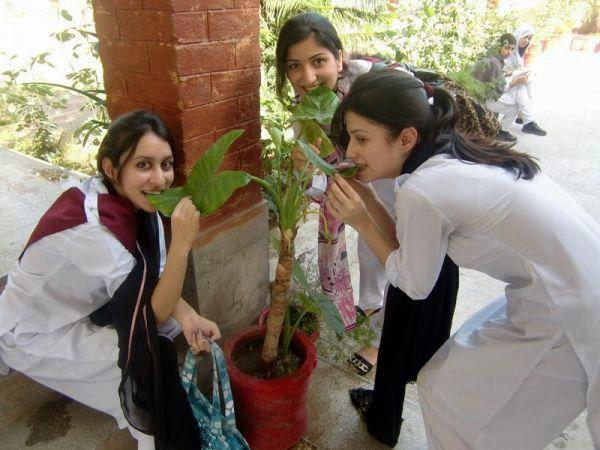 Malik karachi college girls pics karachi college girls pics thecheapjerseys Gallery