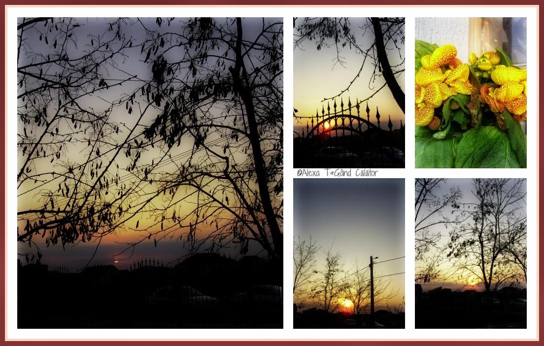 "Timeless (3) ""A year ago; At dusk; Yesteryear...odinioară"" ..."