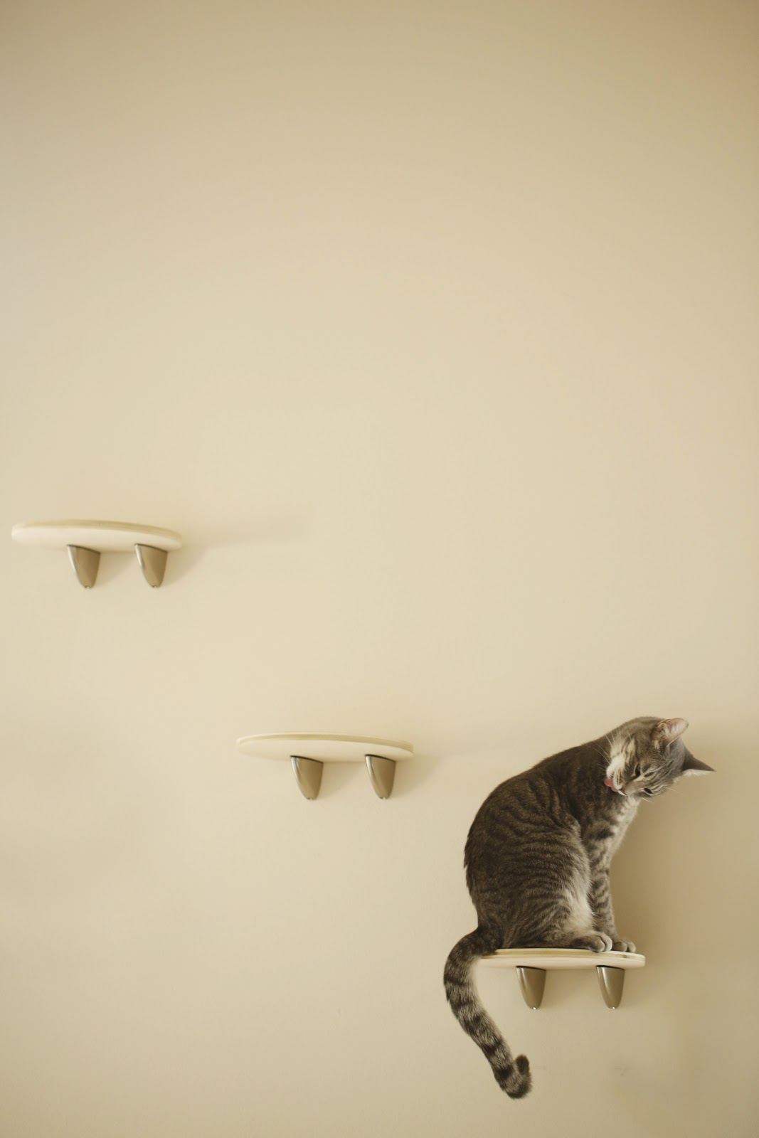 Cat shelves ikea a long one for cat lovers ikea hackers ikea hackers cheap bookshelves for kids - Modern cat tree ikea ...