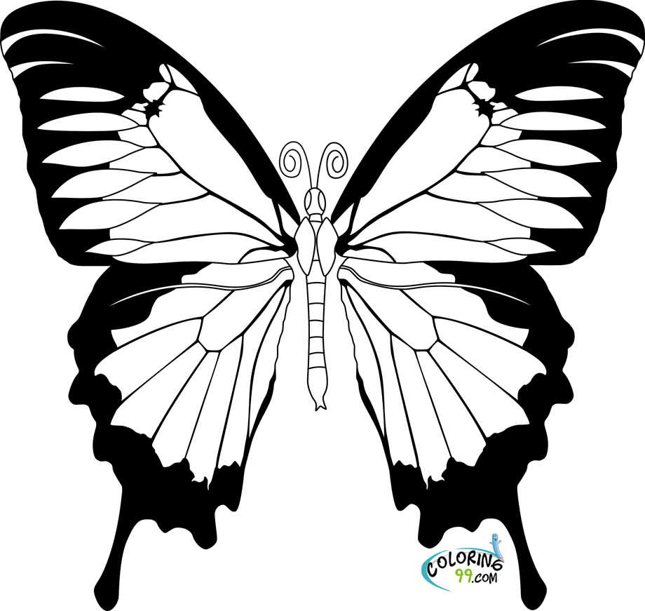 Colouring in pages for girls butterflies -  Butterfly Coloring Pages For Kids