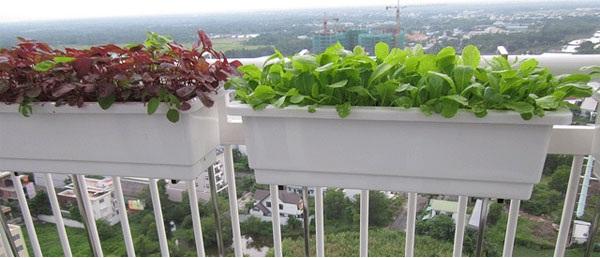 Móc sắt treo chậu nhựa nhật thông minh trồng rau lan can