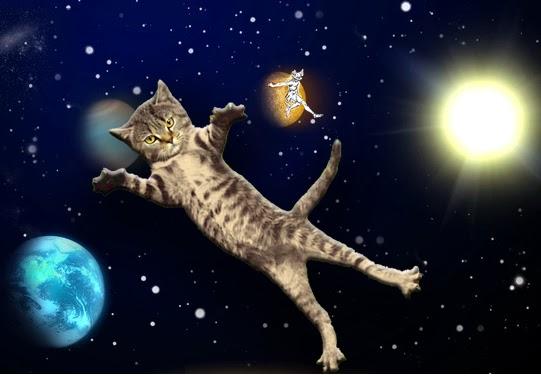 dead cat bounce now