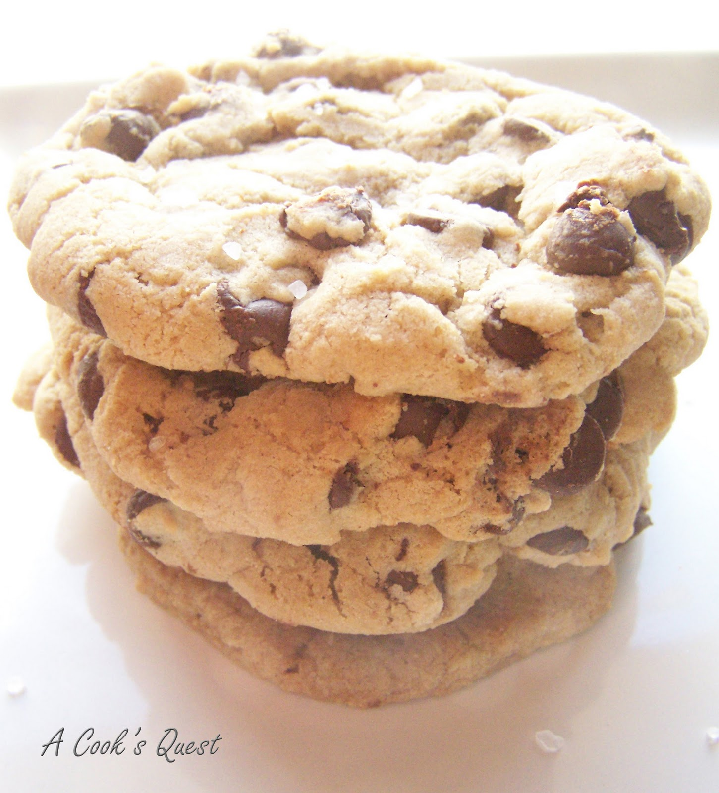 Cook's Quest: Thick and Chewy Chocolate Chip Cookies