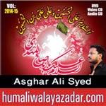 http://www.humaliwalayazadar.com/2014/11/asghar-ali-syed-nohay-2015.html