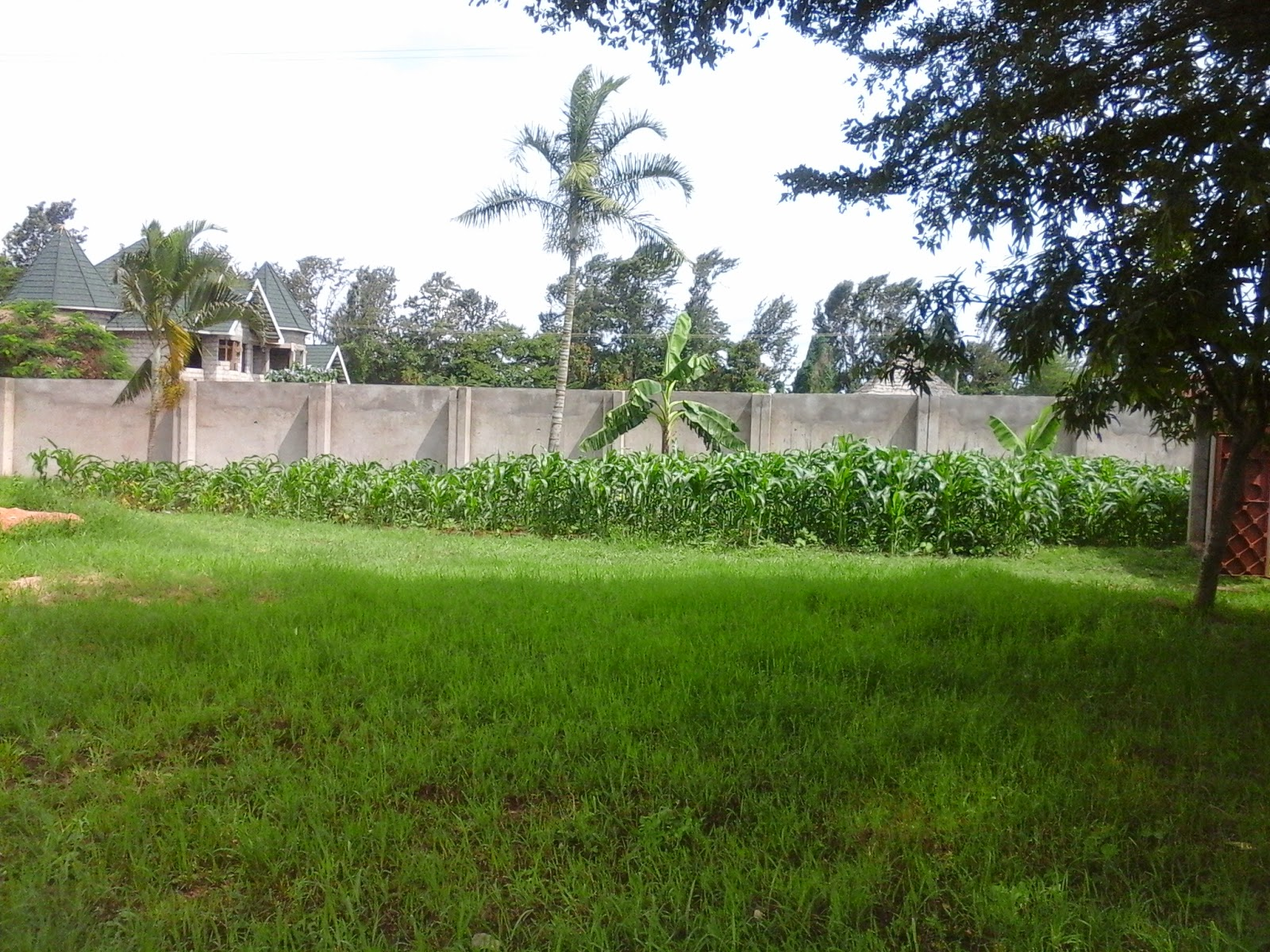 Rent House In Tanzania Arusha Rent Houses Houses For Sale House