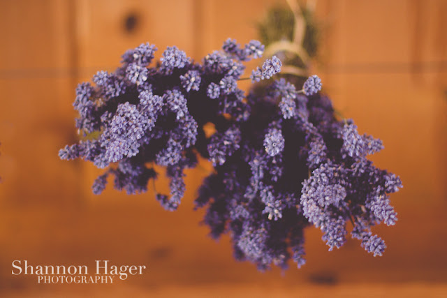 Shannon Hager Photography, Lavender Drying