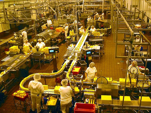 Assembly line workers working in a Tillamook cheese factory in Oregon