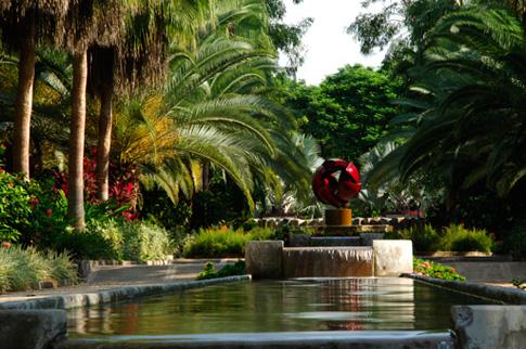 Bosque a salvo i a p de fiesta el jard n bot nico for Talleres jardin botanico