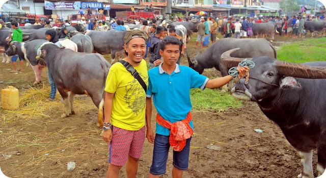Pasar Bolu Toraja