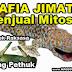 Mafia Jimat Pring Pethuk