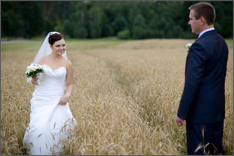 vestuvinė fotografija rugių lauke