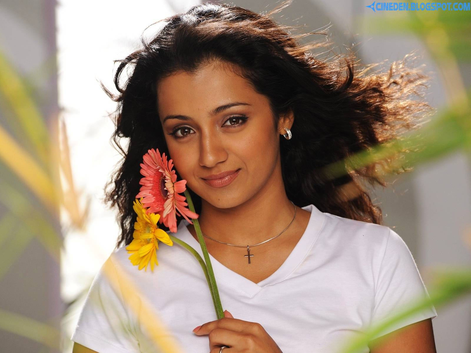 Trisha Krishnan interested in Mollywood