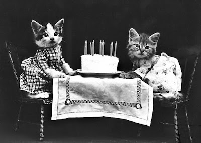 Vintage photo of a cat's birthday