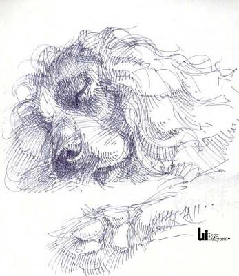 dessin chien (hachures croisées)