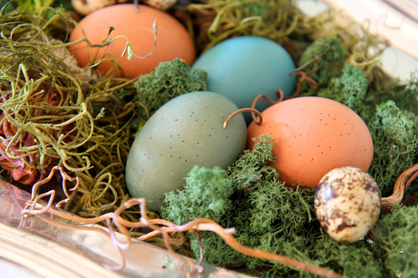 Hard boiled dyed eggs; Easter Eggstravaganza; Nora's Nest