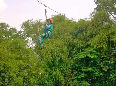 flying fox outbound alas