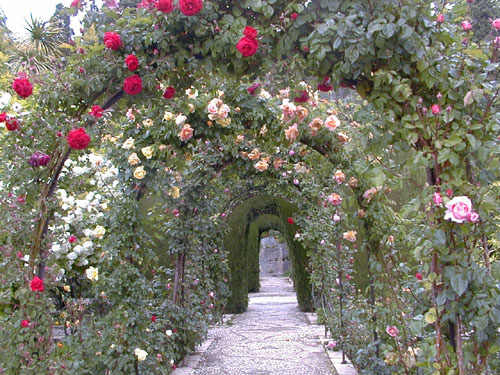 Polichinela la alhambra for Jardin de gomerez granada