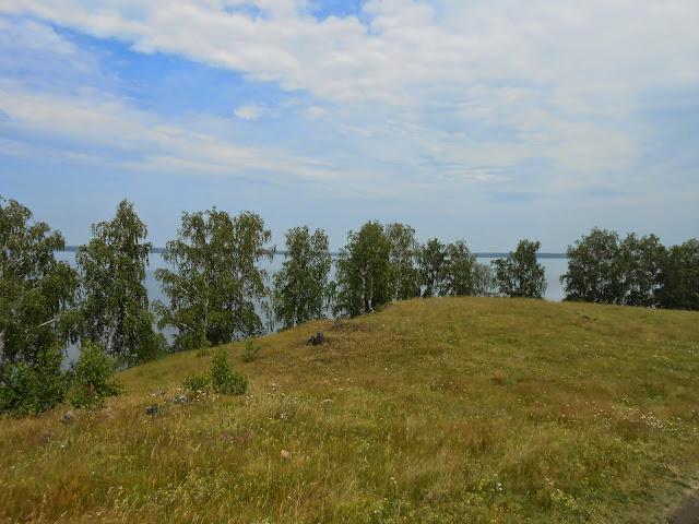 Берёзы вдоль береговой линии озера Большие Касли