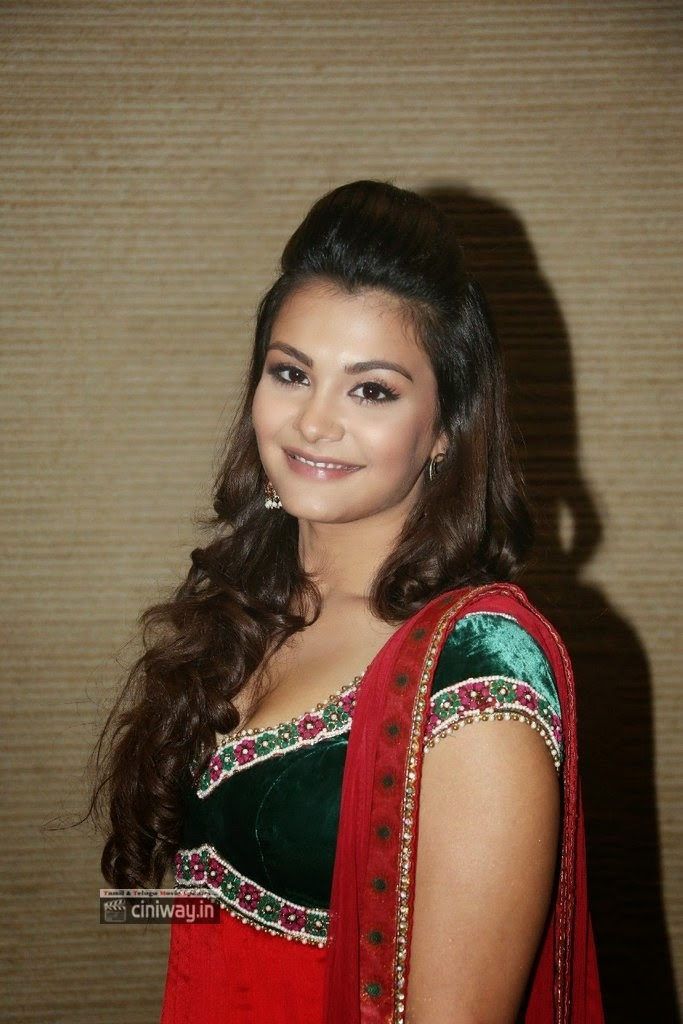 Naziya-Hussain-Stills-at-Nee-Jathaga-Nenundali-Audio-Launch
