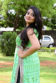 Actress Nikitha Narayan Pictures in Salwar Kameez at Mellagaa Thattindi Manasu Talupu Press Meet (12)