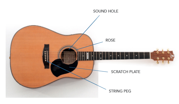 Guitar Anatomy - LEARN GUITAR - Learn Guitar Articles