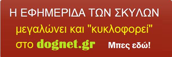 Ανδρεας Ανδριανοπουλος
