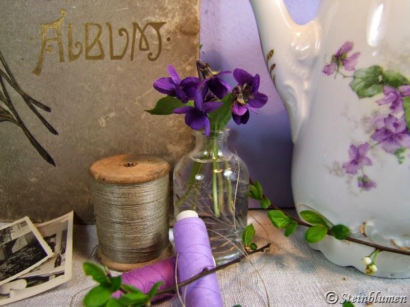 Veilchen für die Vase