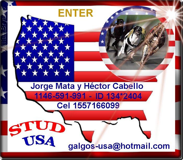 STUD USA - JORGE Y HECTOR
