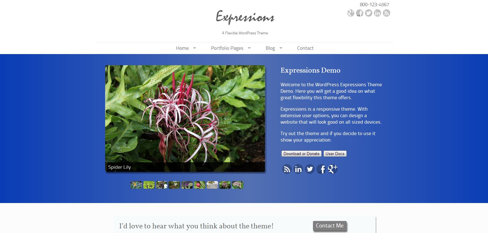 Expressions Theme