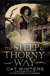 https://www.goodreads.com/book/show/22838927-the-steep-and-thorny-way