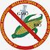 Η Ουγγαρία καταστρέφει 1.000 στρέμματα καλαμποκιού που έχουν καλλιεργηθεί με γενετικά τροποποιημένους σπόρους,  του βιοτεχνολογικού γίγαντα Monsanto