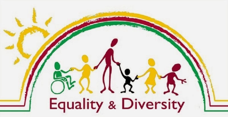 equality diversity and rights essay