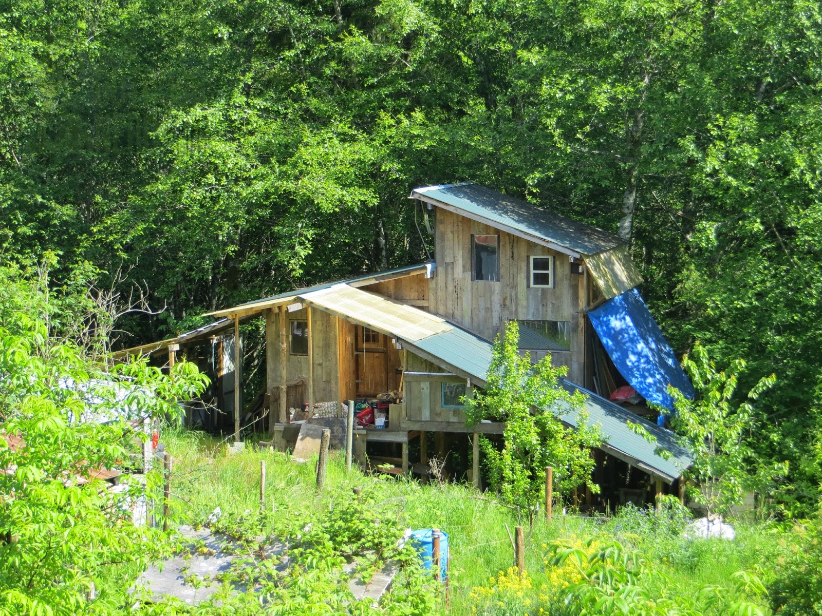 Living Off The Grid 16