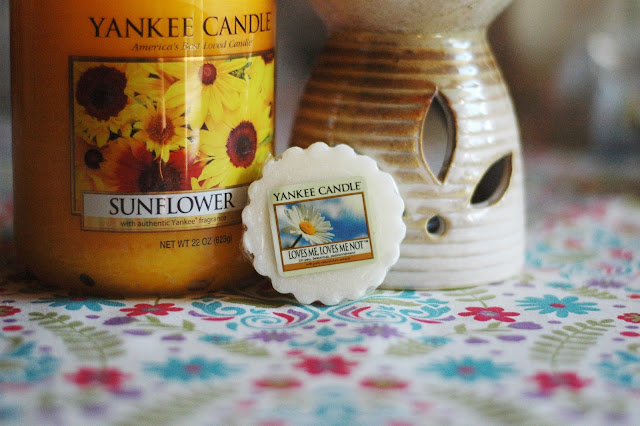 `Yankee Candle - Loves me loves me not
