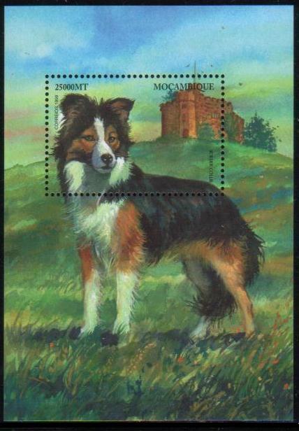 1999年モザンビーク共和国 ボーダー・コリーの切手シート