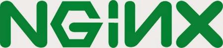 DriveMeca nginx logo