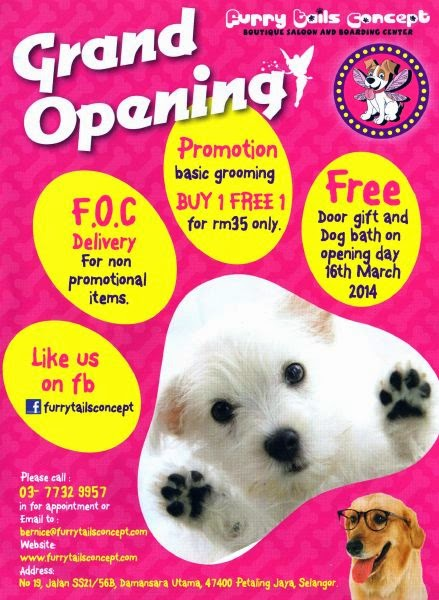 Uptown blog new pet shop opening furry tails concept - Grand petshop ...