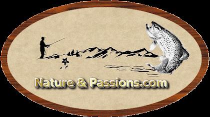 lien pour le forum nature et passion