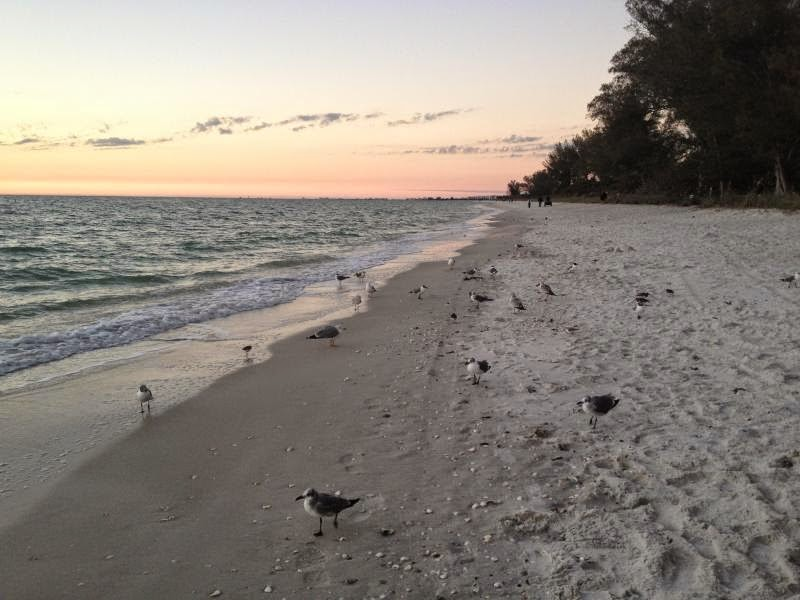 Naples Vacation Rental By Owner, Cottage