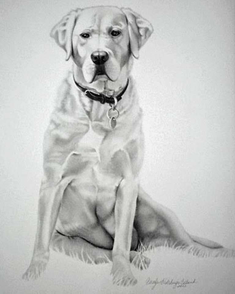 Imágenes Arte Pinturas Dibujos De Perros Hechos A Lapiz Sobre Papel