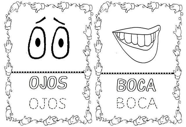 Perfecto Libro Para Colorear De Cuerpo Humano Ideas - Páginas Para ...