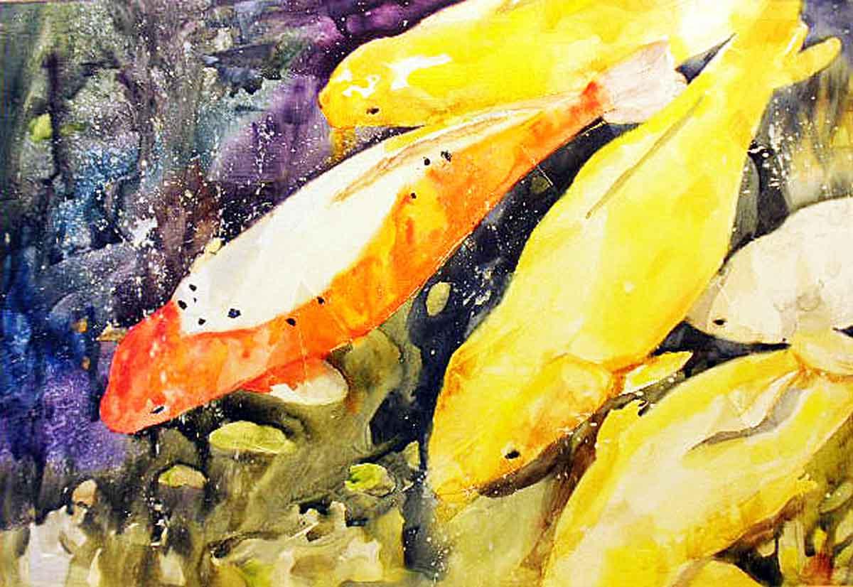 Kaysmithbrushworks coy koi pond for Koi fish habitat