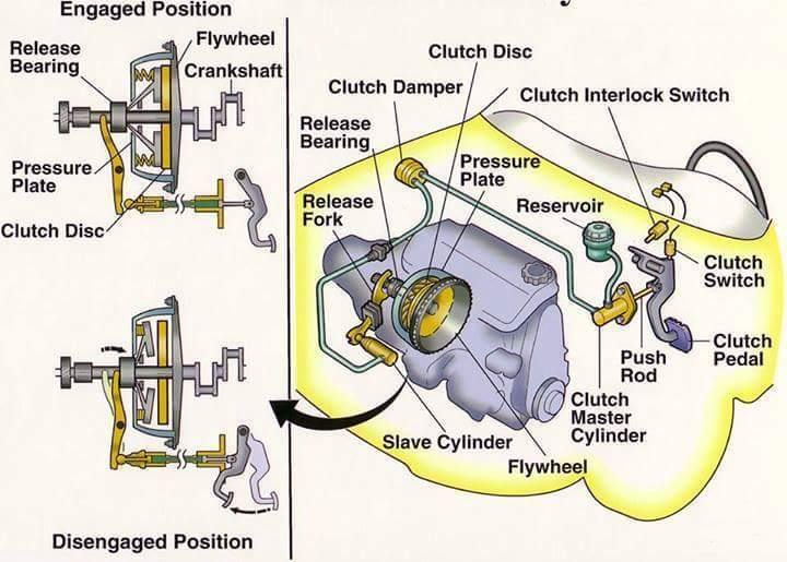 Car Facts  Clutch Mechanism Diagram