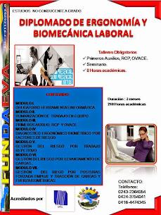 DIP ERGONOMIA Y BIOMECANICA LABORAL