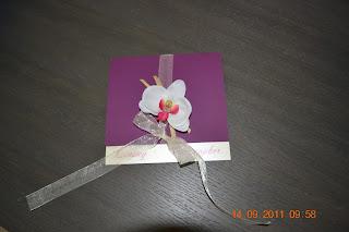 faire part vert anis iris et ivoire iris orchide blanche - Faire Part Mariage Orchide