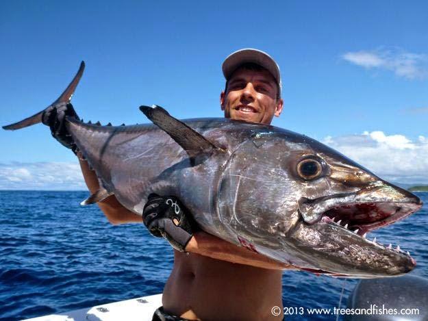 warta pancing tuna gigi anjing lawan tangguh pemancing